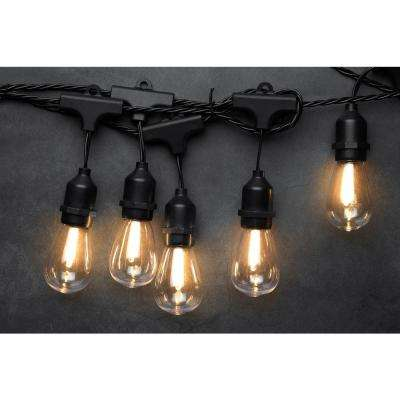 10-Light 10.5 ft. Edison Bulb Warm White LED String Light