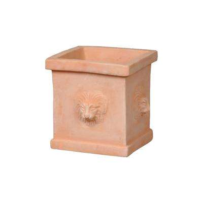 10 in. Terracotta Clay Lion Head Square Planter