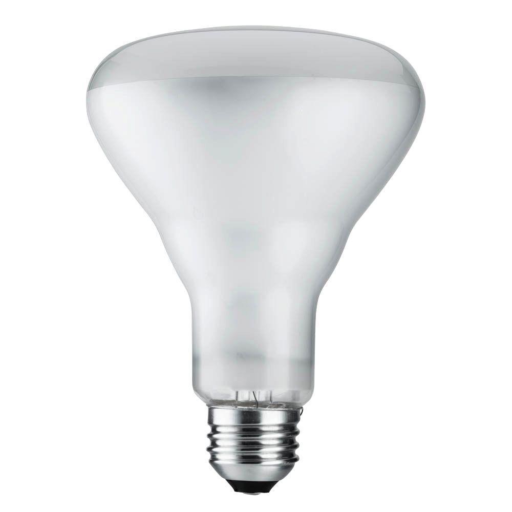 DuraMax 65-Watt Incandescent BR40 Flood Light Bulb (8-Pack)