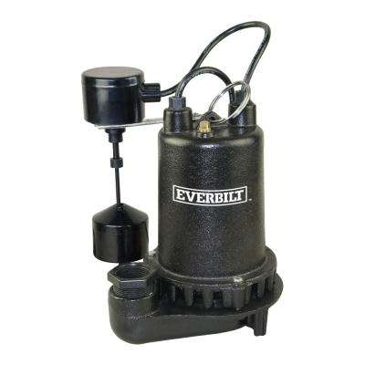 1 HP Professional Sump Pump