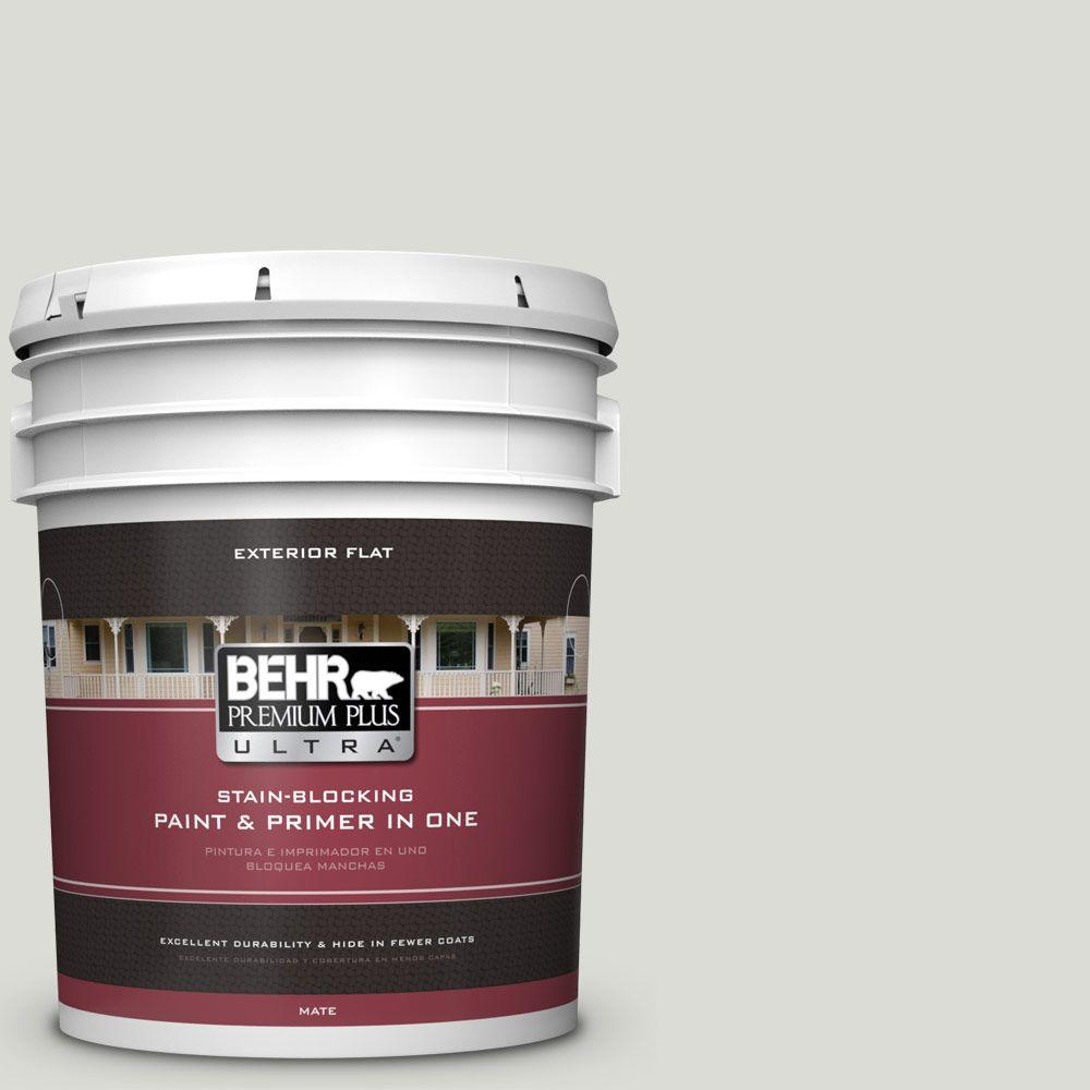 5-gal. #BWC-29 Silver Feather Flat Exterior Paint