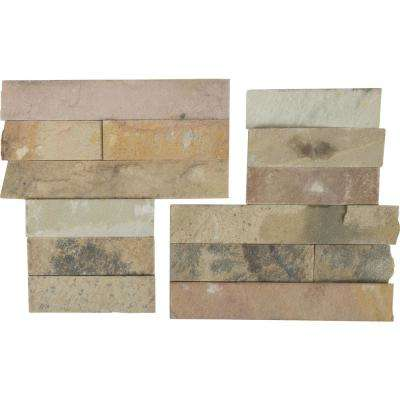 Salvador Fossil Corner 6 in. x 6 in. Natural Sandstone Wall Tile (6 sq. ft. / case)