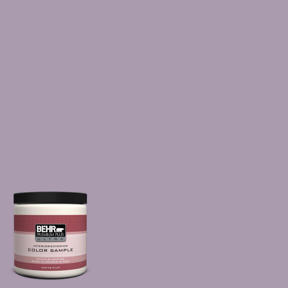BEHR Premium Plus Ultra 8 oz. #PPU16-12 Charm Interior/Exterior Paint Sample