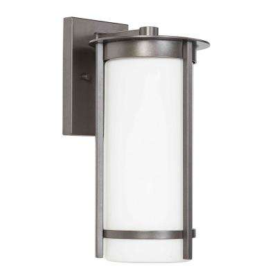 Truxton 1-Light Graphite Outdoor Wall Mount Cylinder Light