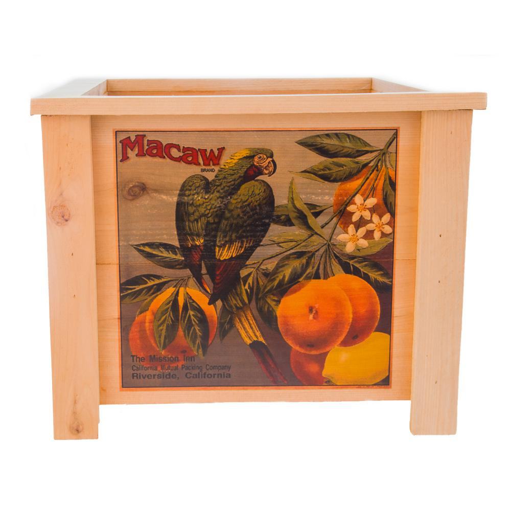 19 in. x 19 in. Square Cedar Planter Box with Macaw