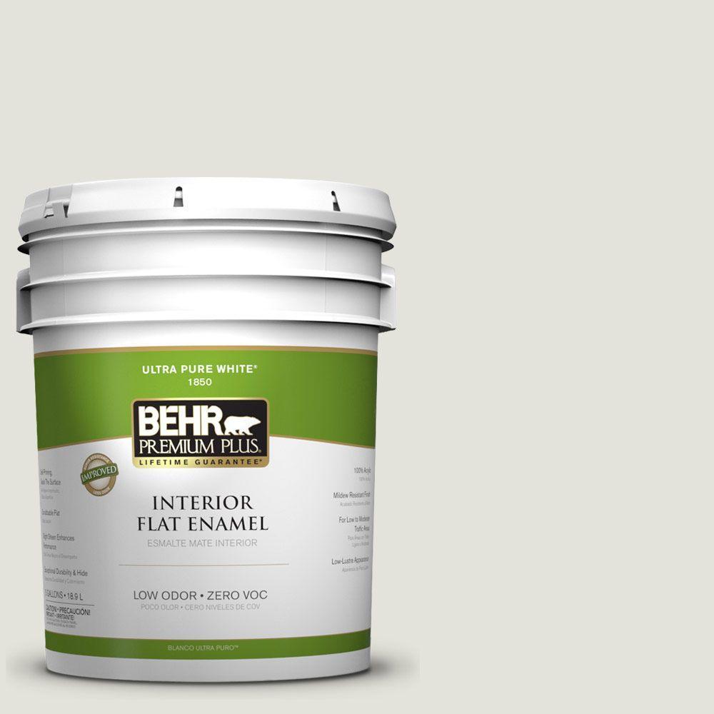 BEHR Premium Plus Home Decorators Collection 5-gal. #HDC-NT-24 Glacier Valley Zero VOC Flat Enamel Interior Paint-DISCONTINUED