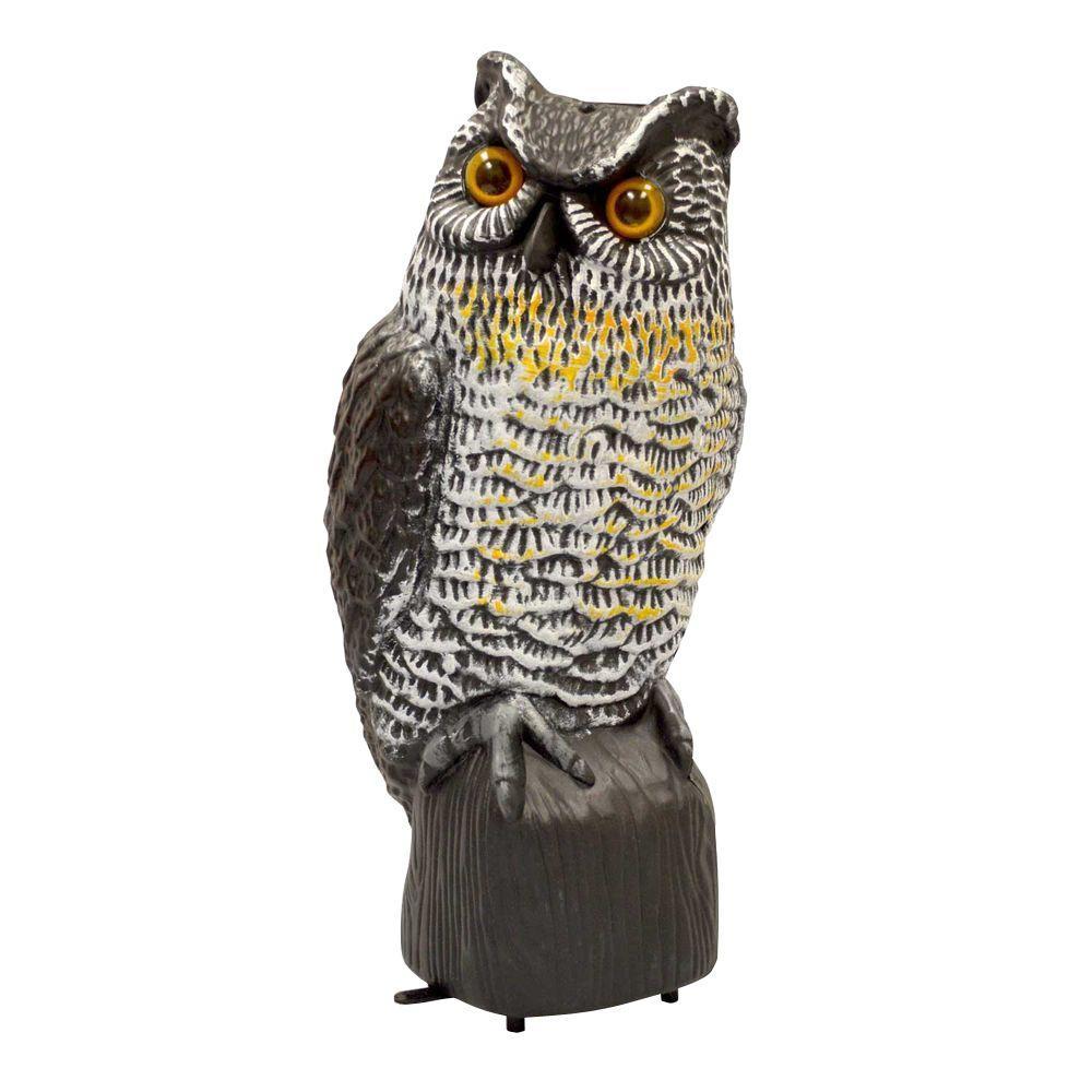 VisualScare Eye Glowing Owl ...