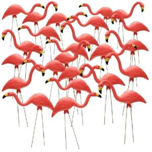 Pink Flamingo 24 Pack