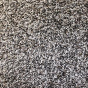 Carpet Sample - First Base - Color Award Twist 8 inch x 8 in. by