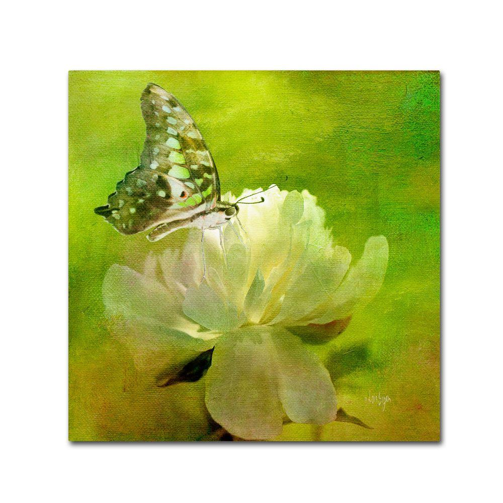 35 in. x 35 in. Malachite on Peony Canvas Art-LBr0196-C3535GG - The ...