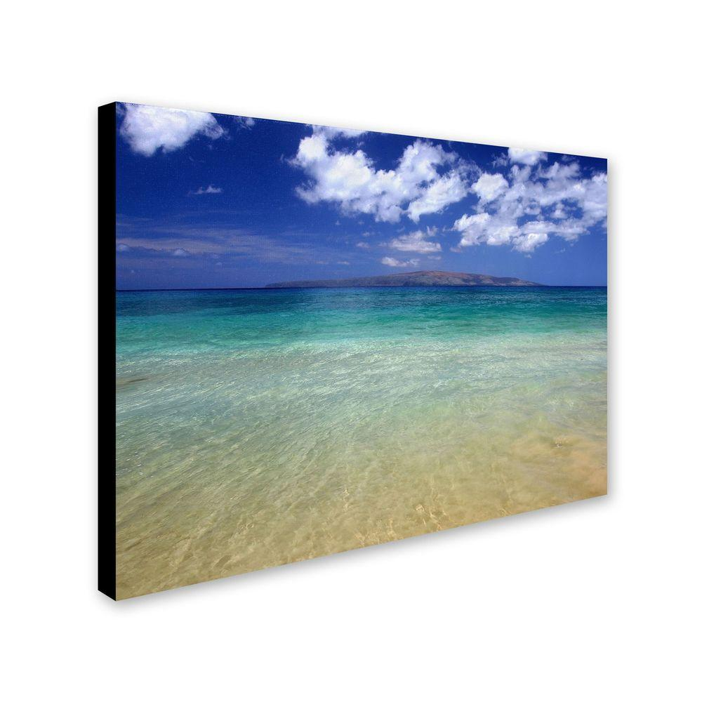 22 in. x 32 in. Hawaii Blue Beach Canvas Art