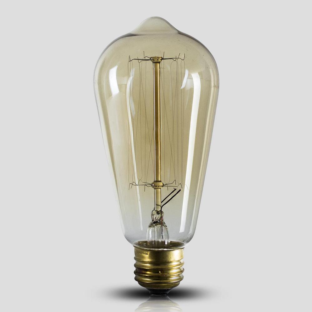 Vintage Edison 40-Watt Elongated Light Bulb