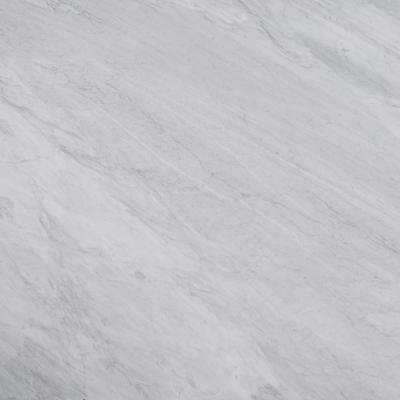 3 in. x 3 in. Marble Countertop Sample in Carrara Silver Honed Marble