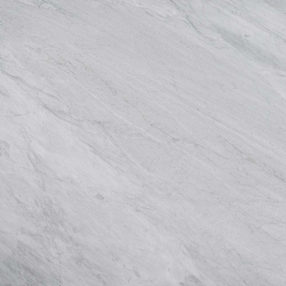 3 in. x 3 in. Marble Countertop Sample in Carrara Silver Honed Marble