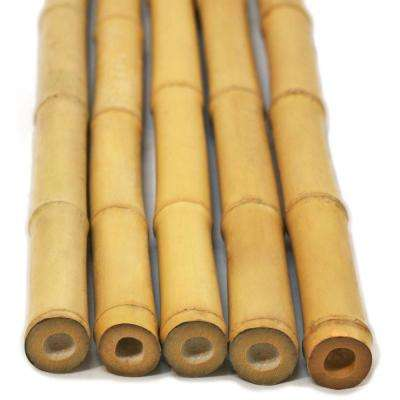 2 in. D x 8 ft. H Natural Bamboo Poles (10-Piece/Bundle)