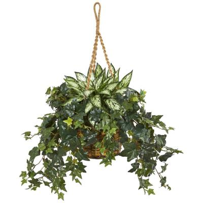 Indoor 30 in. Silver Queen and Ivy Artificial Plant in Hanging Basket