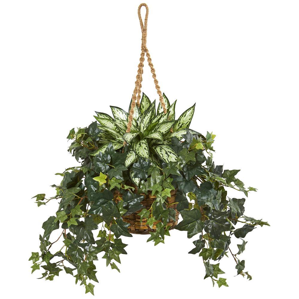 Indoor 30 in. Silver Queen and Ivy Artificial Plant in Hanging Basket