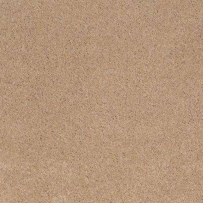 Carpet Sample - Tremendous II - Color Natural Texture 8 in. x 8 in.