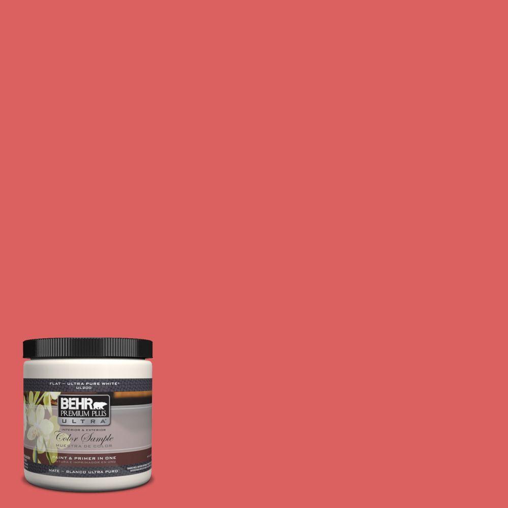 BEHR Premium Plus Ultra 8 oz. #P170-5 Roulette Interior/Exterior Paint Sample