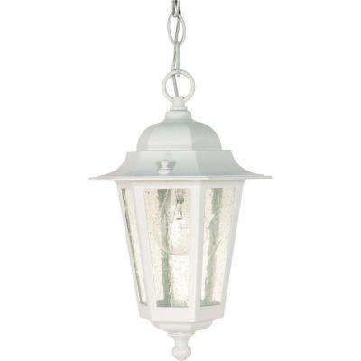 1 Light Outdoor White Incandescent Pendant