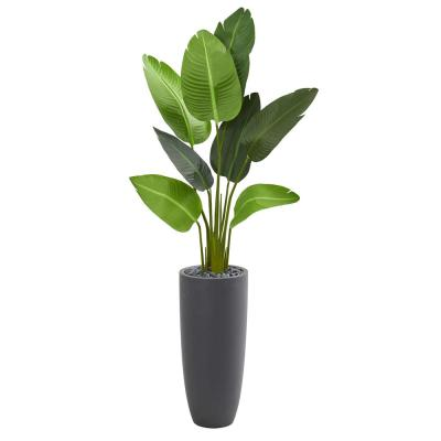 Indoor 5.5 ft. Traveler's Palm Artificial Tree in Gray Planter