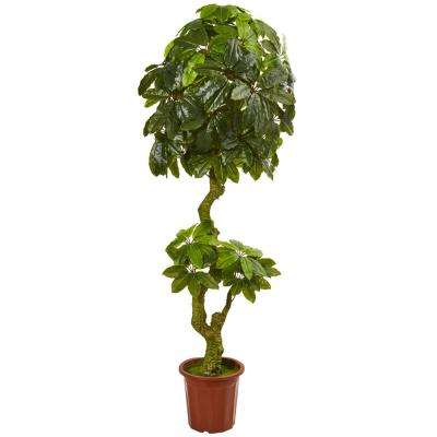 6 in. UV Resistant Indoor/Outdoor Schefflera Artificial Tree