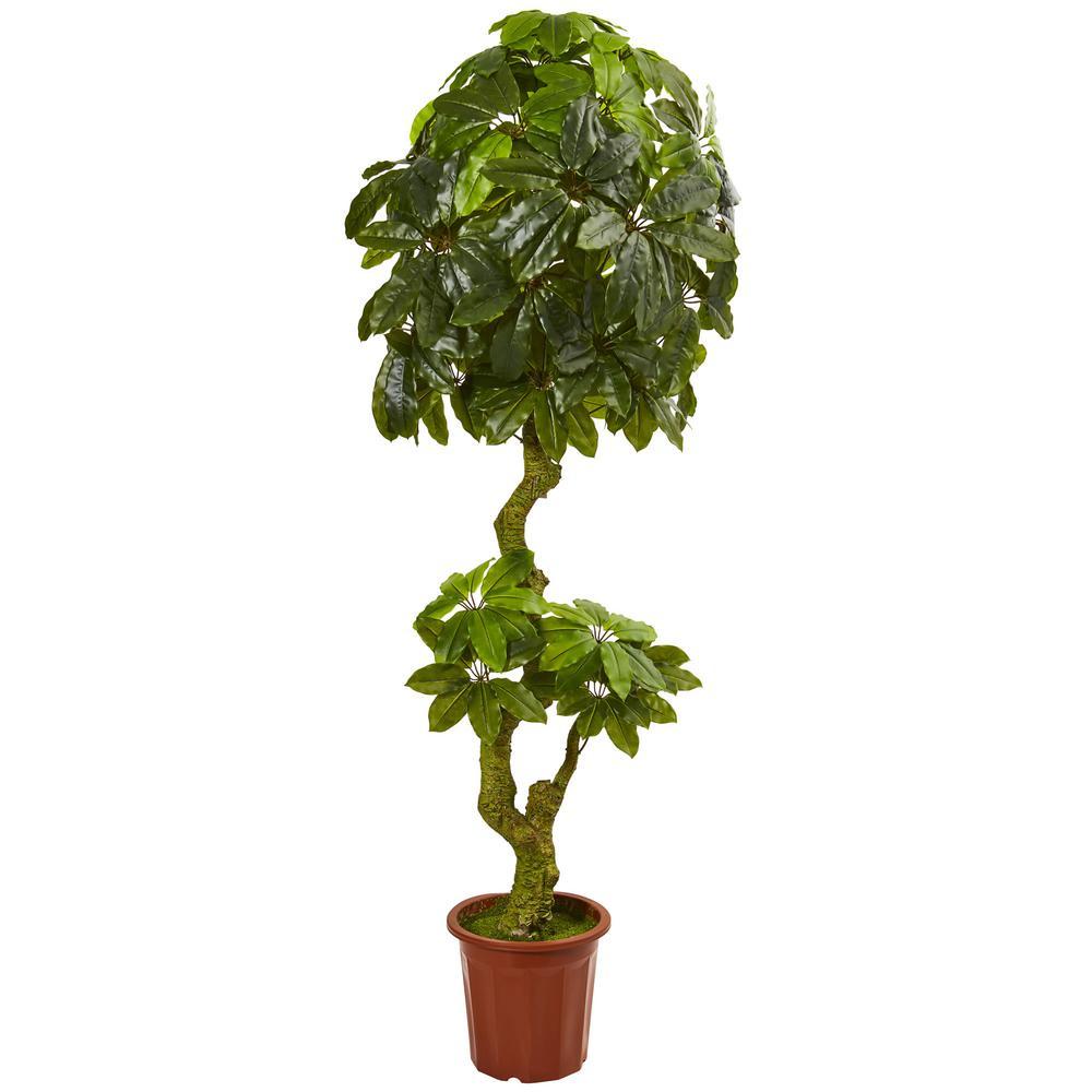 Nearly Natural 6 in. UV Resistant Indoor/Outdoor Schefflera Artificial Tree 5500