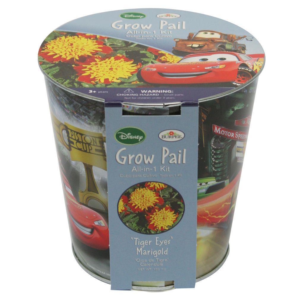 Cars Grow Kit Bucket