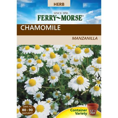 Chamomile German Seed