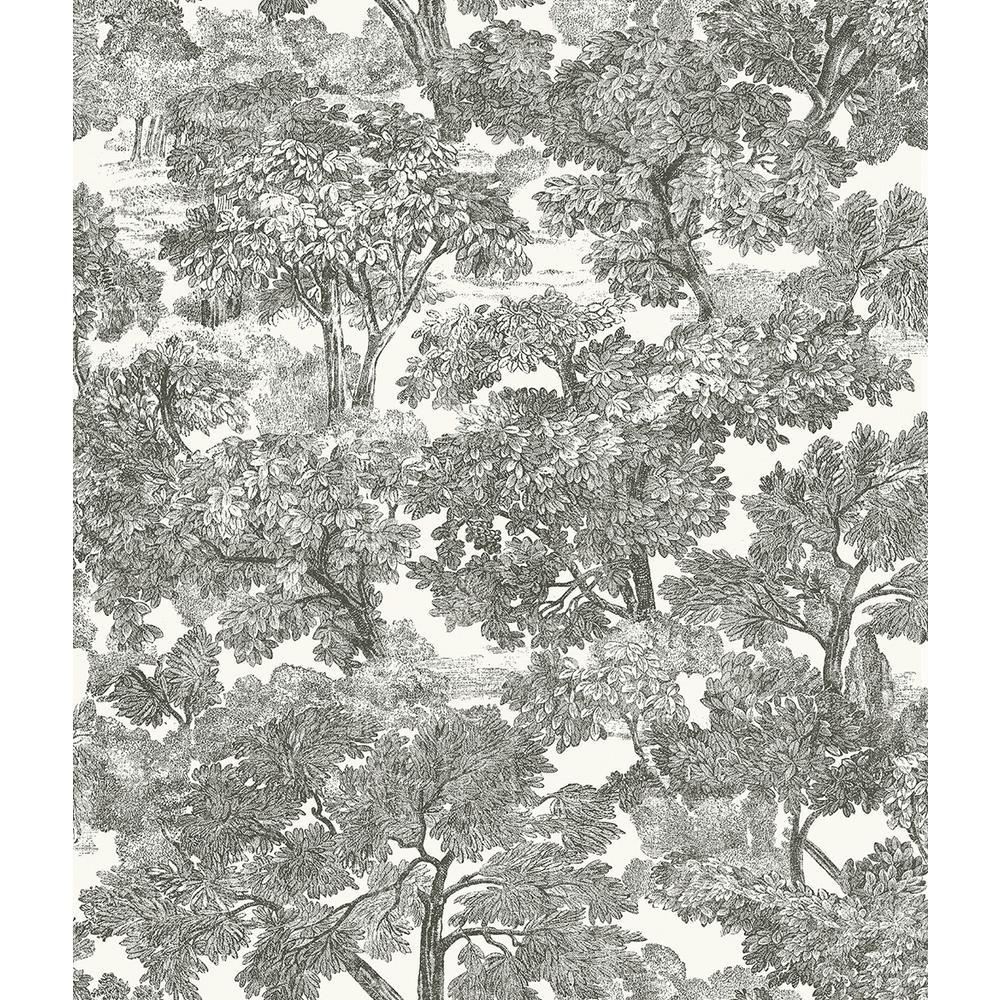 8 in. x 10 in. Spinney Black Toile Wallpaper Sample