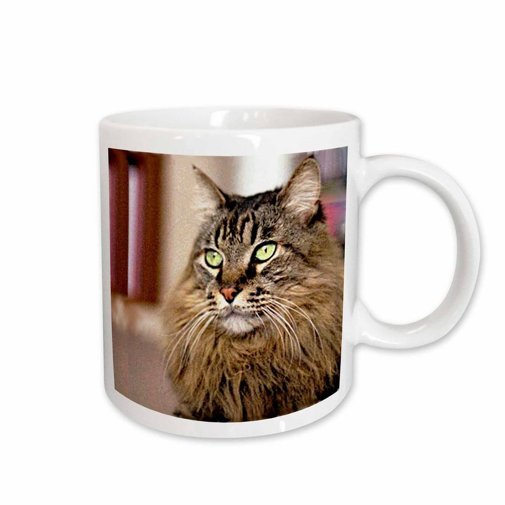 Cats 11 oz. White Ceramic Maine Coon Mug