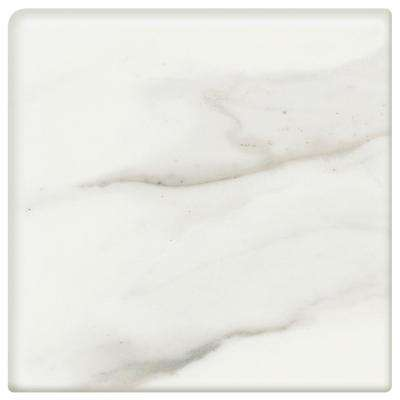 Developed by Nature Calacatta 2 in. x 2 in. Ceramic Bullnose Corner Wall Tile (2-Pack)