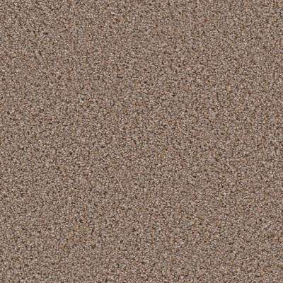 Carpet Sample - Around The Clock I - Color Nightlife Texture 8 in. x 8 in.