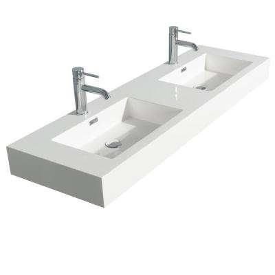 Daniella 60 in. W x 18 in. D Resin Double Basin Vanity Top in White with White Basin