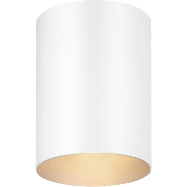 1-Light Indoor or Outdoor White Aluminum Flush Mount Cylinder Ceiling Fixture