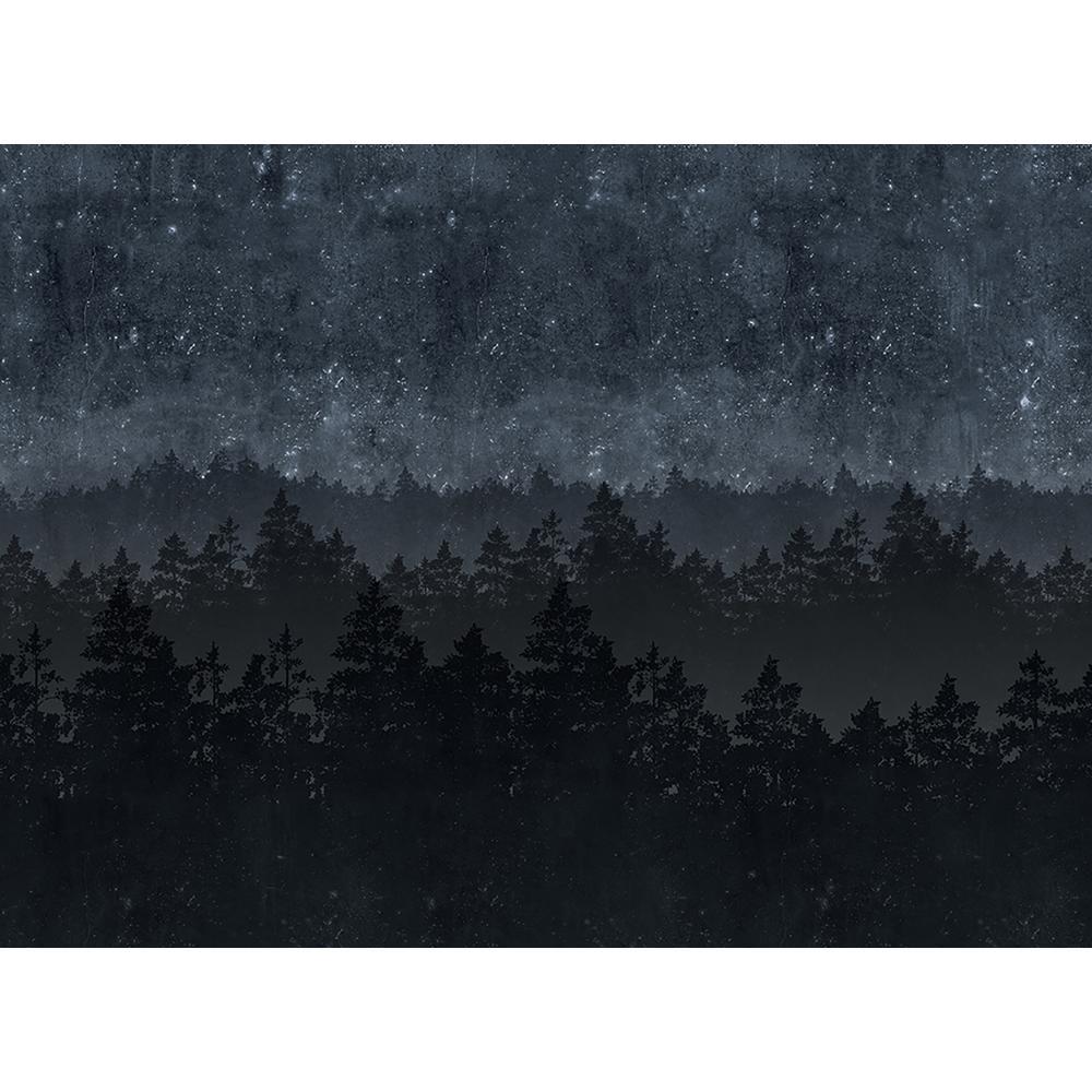 Nordic Night Wall Mural