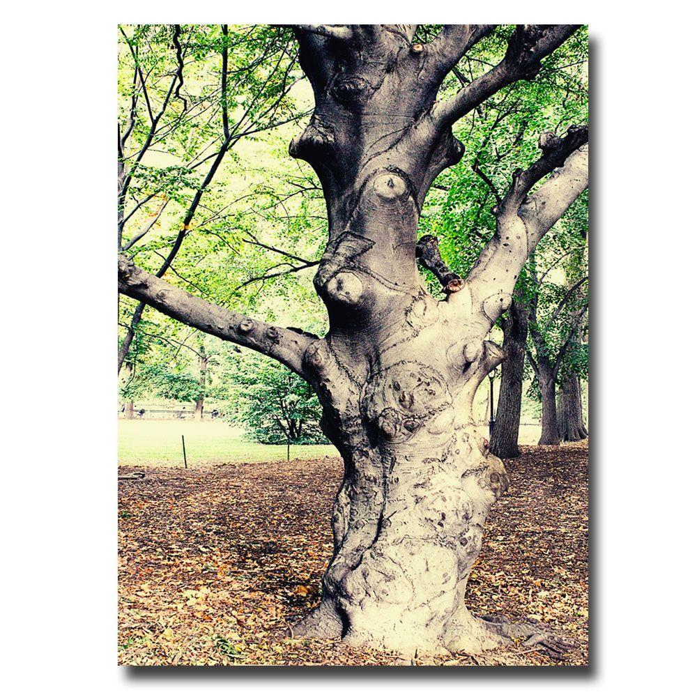 Trademark Fine Art 22 in. x 32 in. Tree Canvas Art
