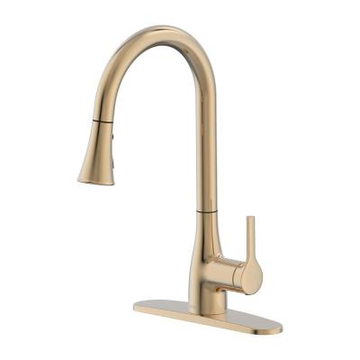 Classic Series Single-Handle Pull-Down Sprayer Kitchen Faucet in Champagne Gold