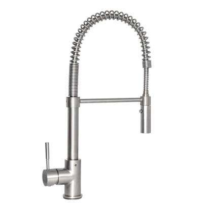 Sierra Single-Handle Pull-Down Sprayer Kitchen Faucet in Stainless Steel