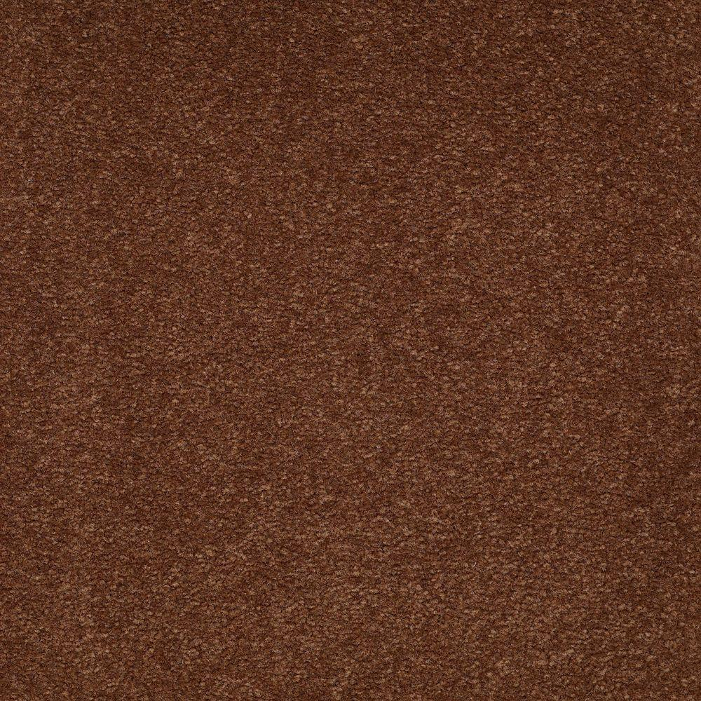 Platinum Plus Enraptured II - Color Dakota 12 ft. Carpet