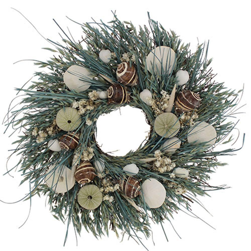 The Christmas Tree Company Waves and Water 18 in. Seashell and Dried Floral Wreath