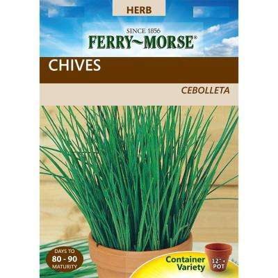 Chives Seed