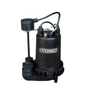 Everbilt 1 HP Professional Sump Pump by Everbilt