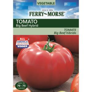 Jelly Bean Red Hybrid VFFASt Tomato Seeds - Seeds 'n Such