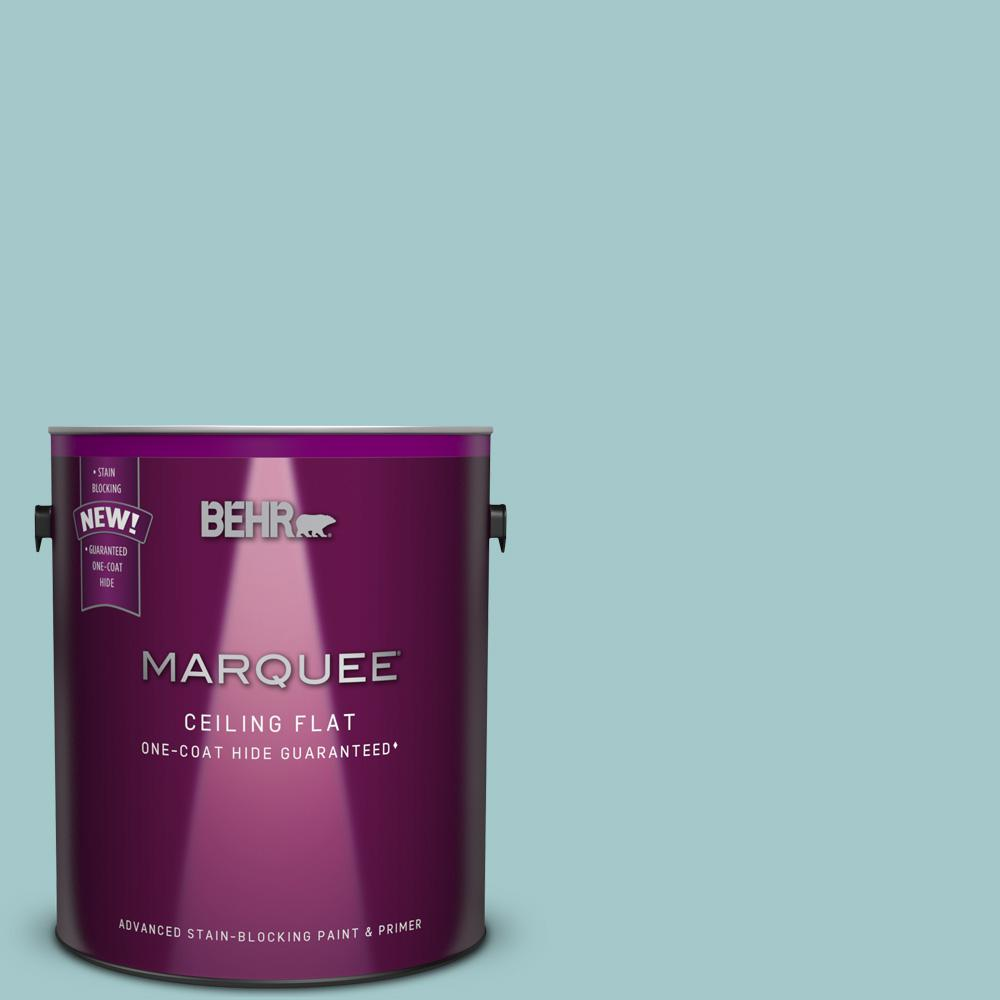 1 gal. #PPU13-10 Tinted to Ocean Boulevard Flat Interior Ceiling Paint