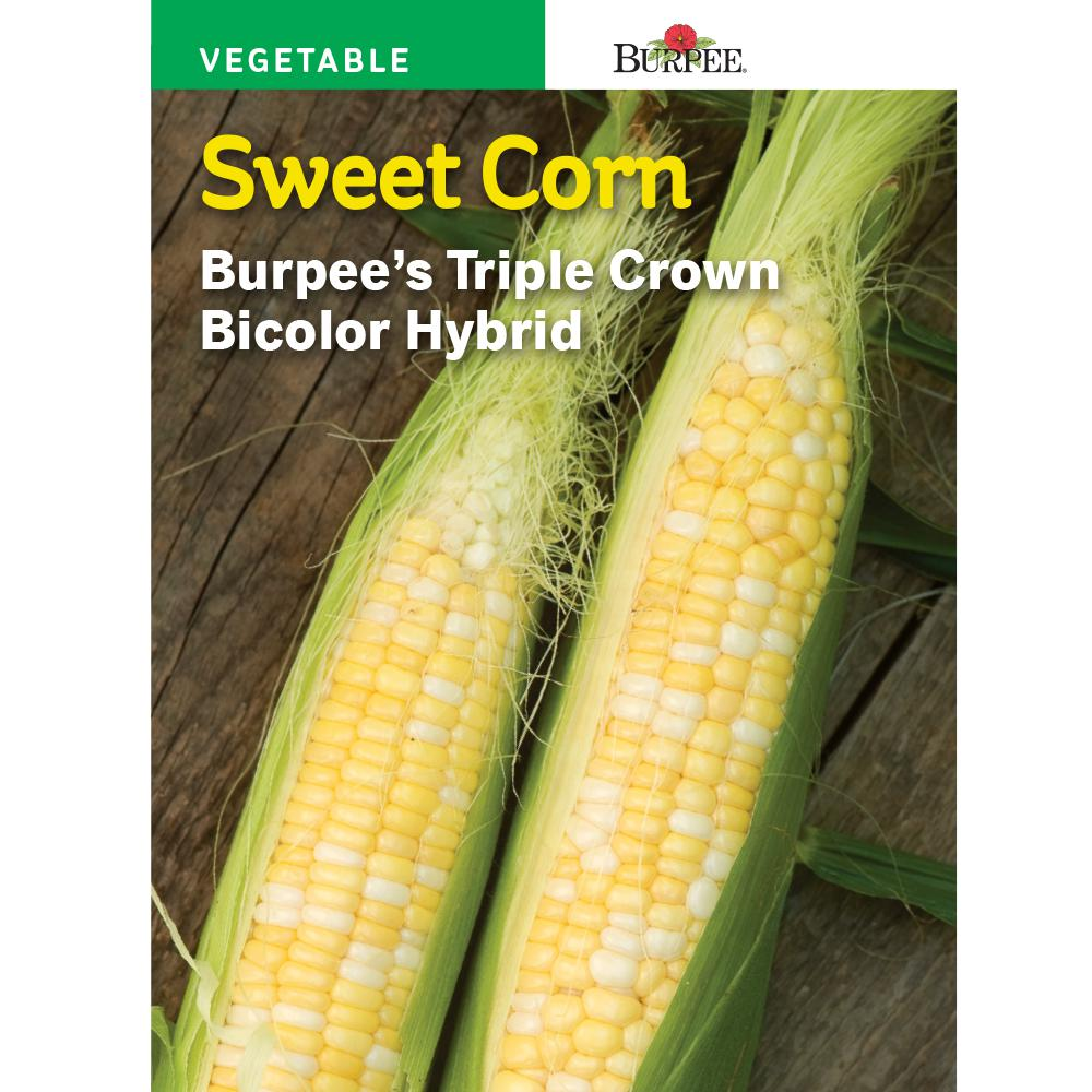 Corn Sweet Triple Crown XP Bicolor Hybrid Seed