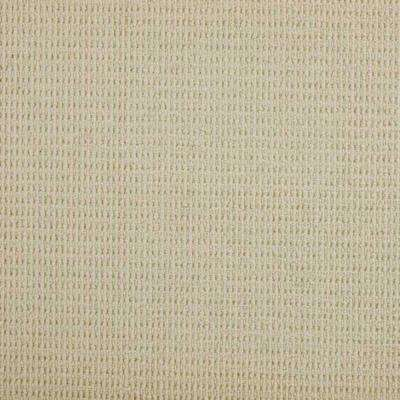 Carpet Sample - Terrain - Color Blanc Loop 8 in. x 8 in.