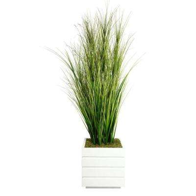 66 in. Tall Onion Grass with Twigs in 14 in. Fiberstone Planter