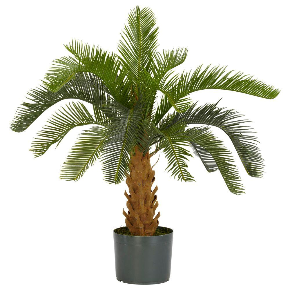 Green Cycas Silk Plant