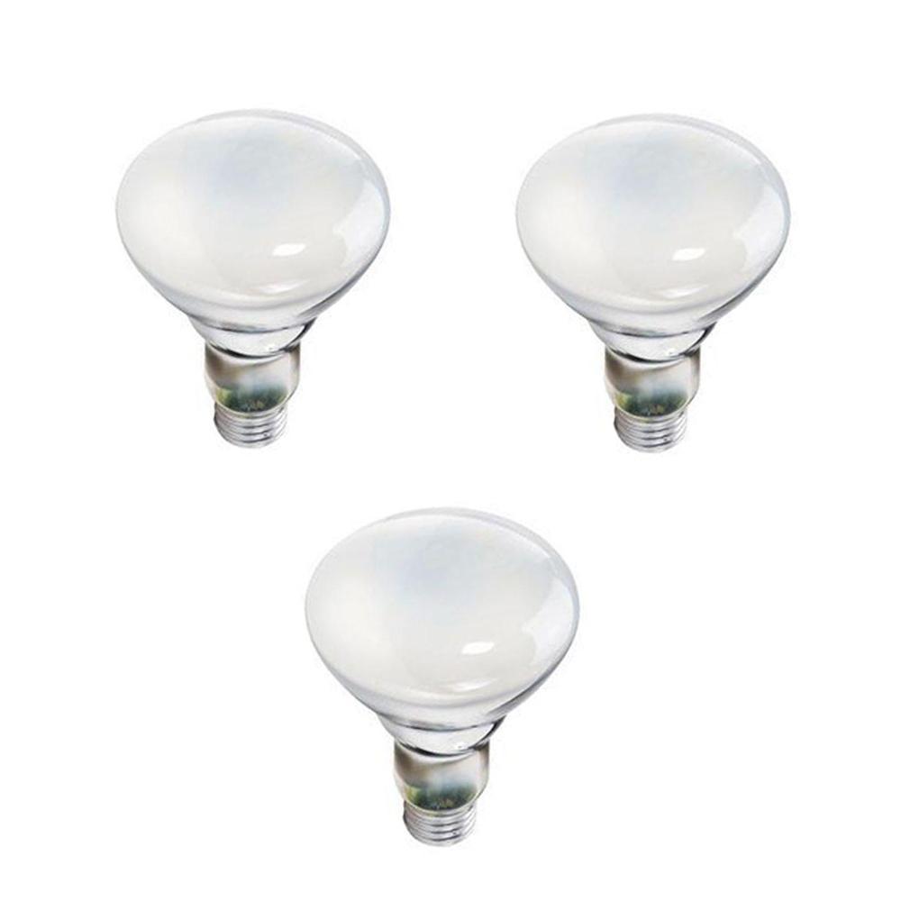 65-Watt BR30 Incandescent Indoor Flood Light Bulb (3-Pack)